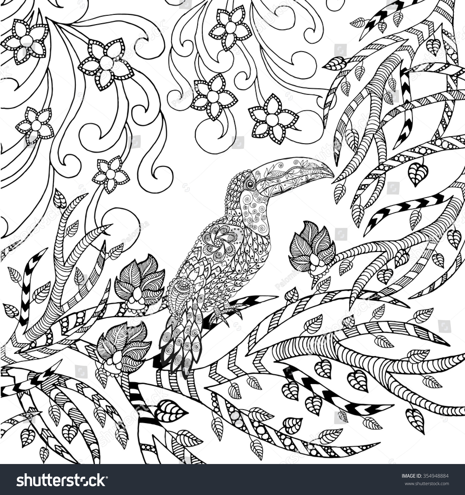 Adult Top Toucan Coloring Pages Images top toucan coloring page animals hand drawn doodle ethnic patterned save to a lightbox images