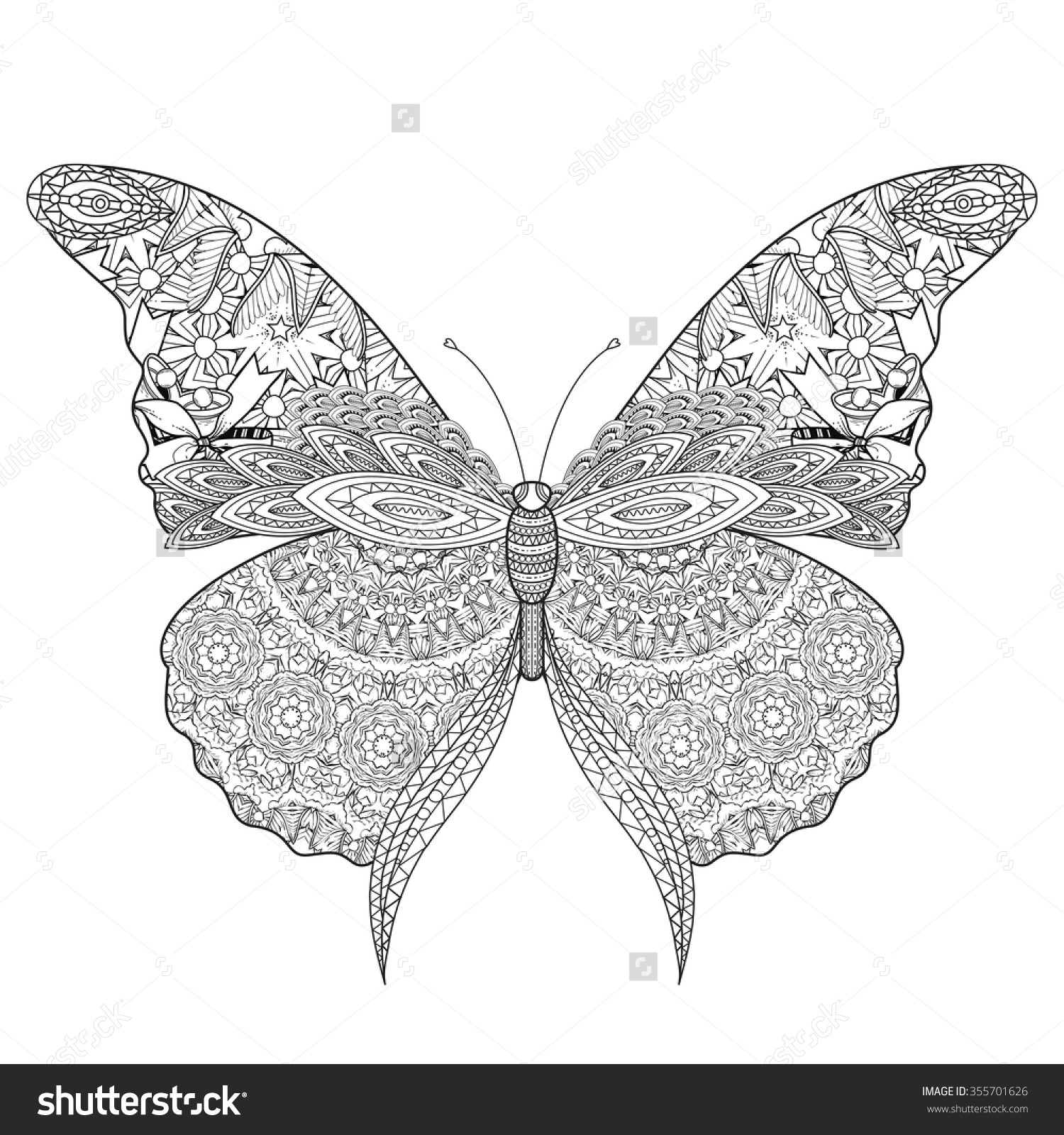 beautiful butterfly coloring page exquisite line lager vektor