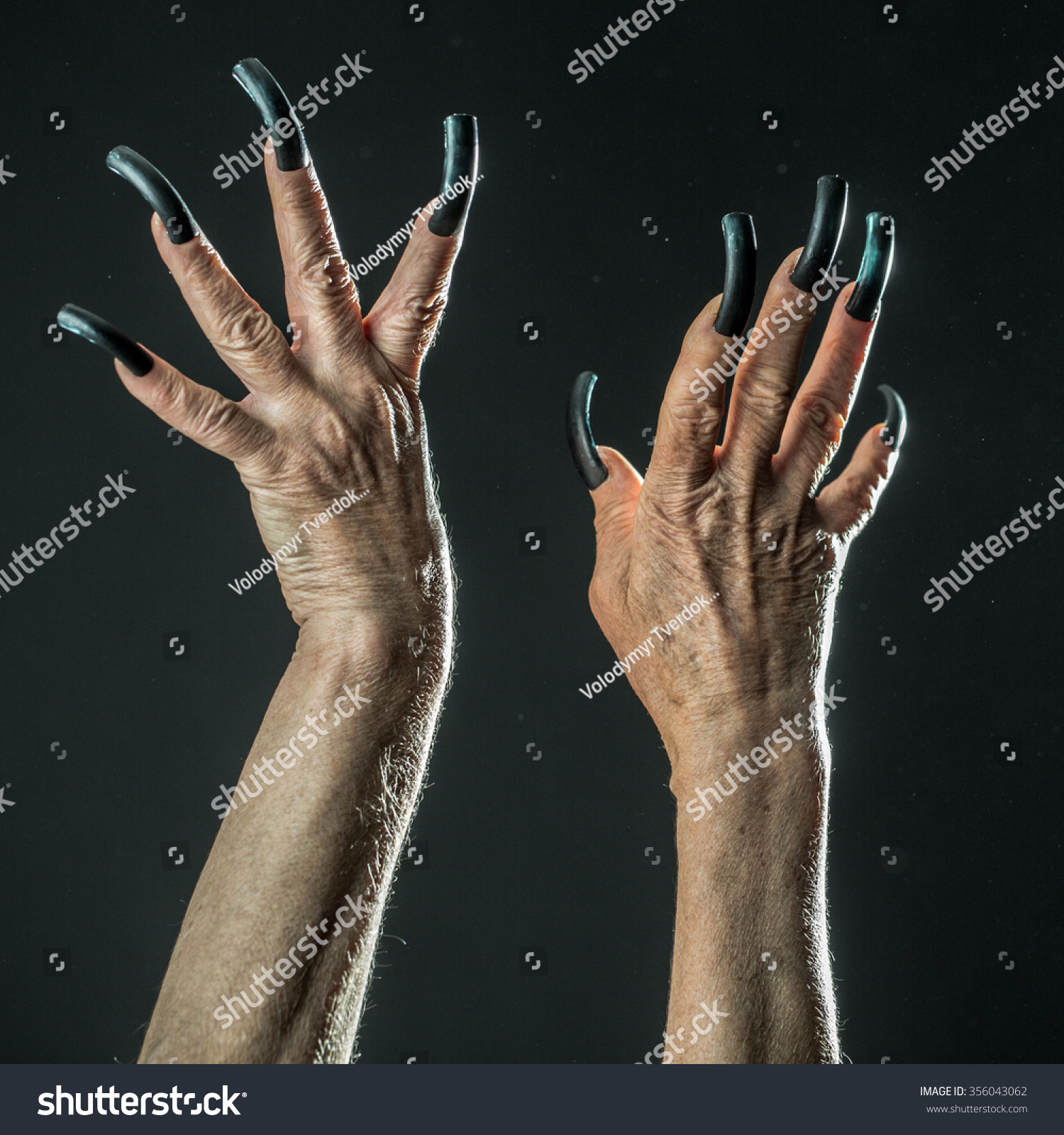 Closeup View Two Female Old Scary Stock Photo 356043062 ...