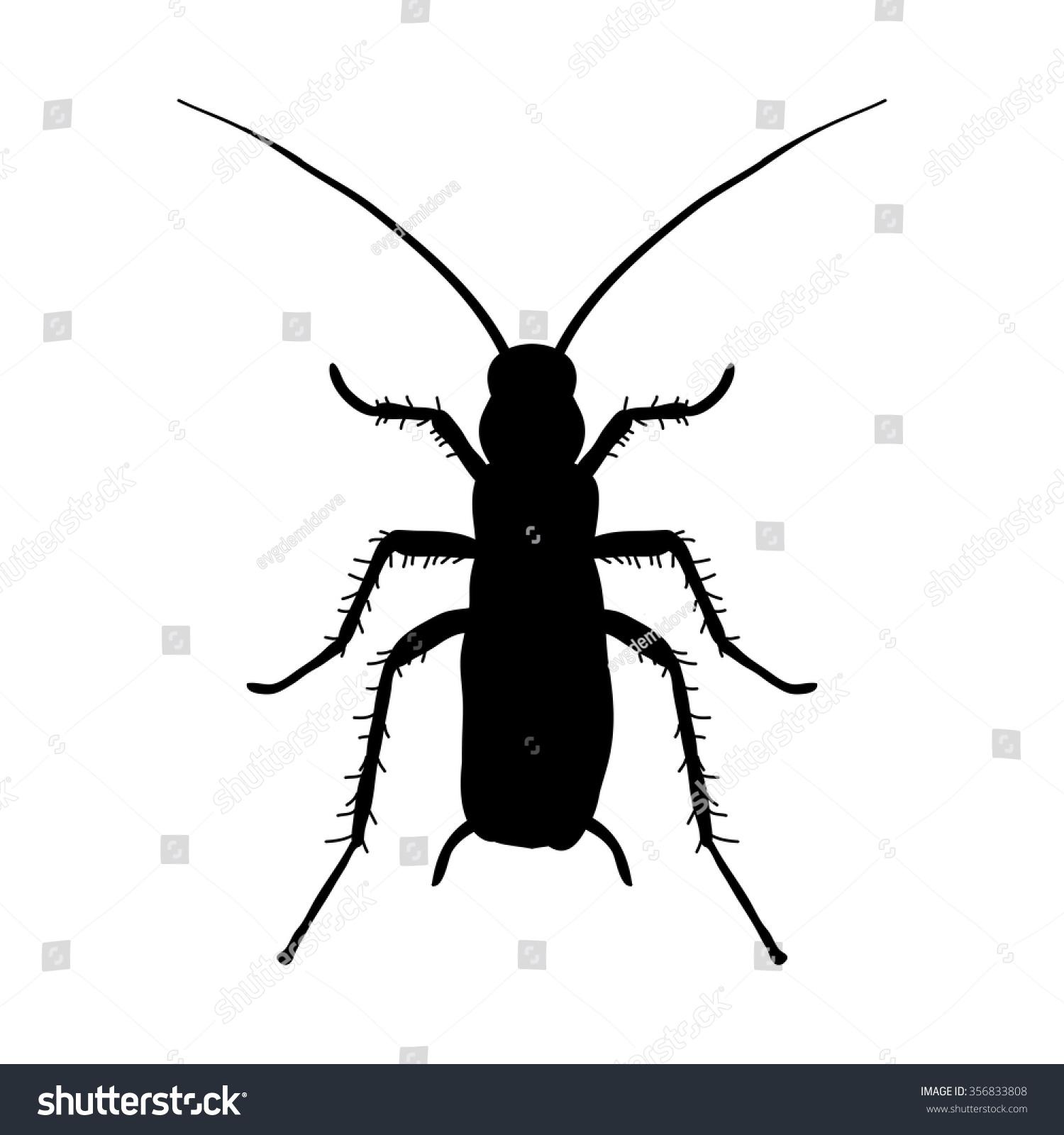 Silhouette Cockroach Blattella Germanica Cockroach Sketch Stock