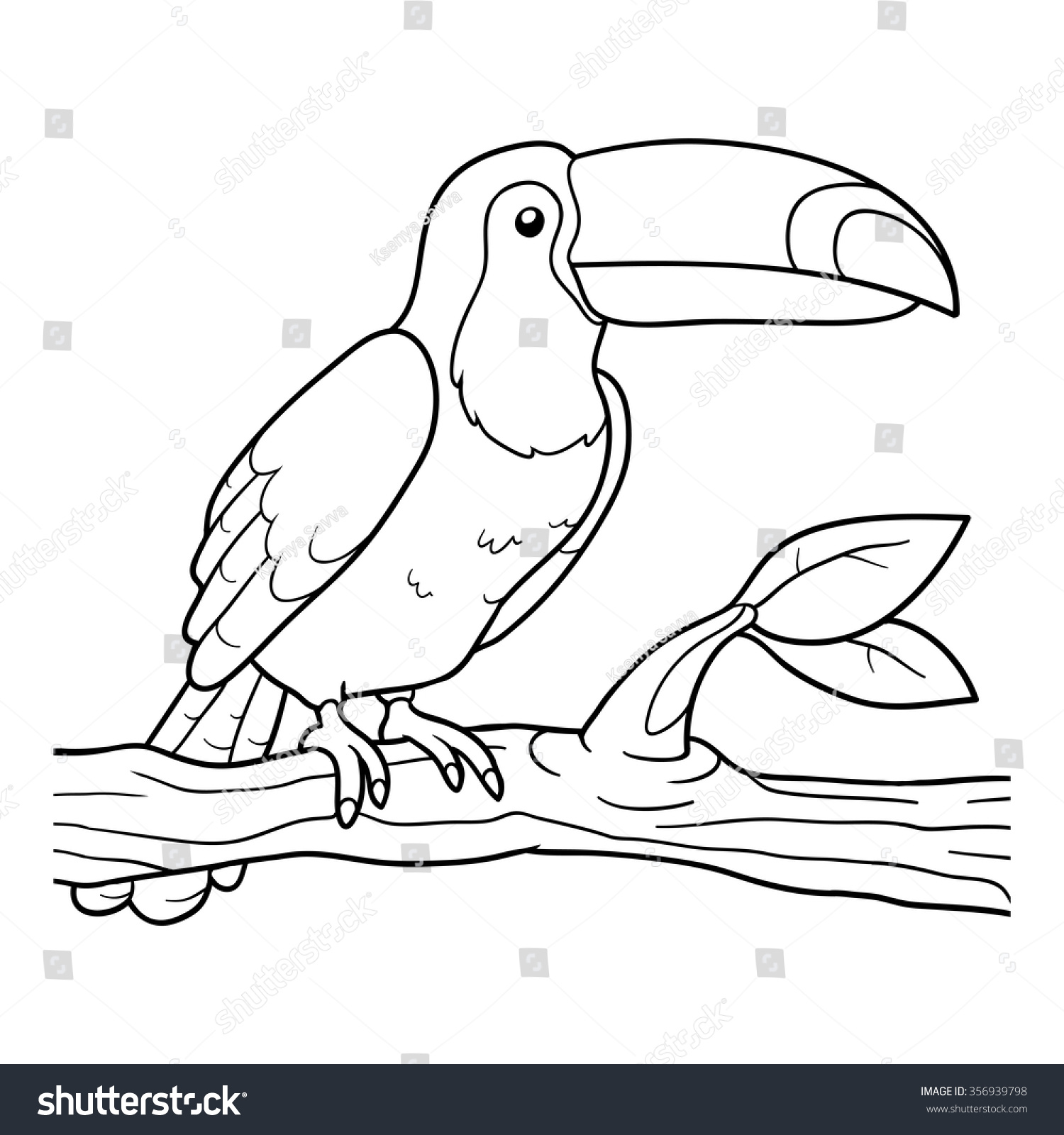 Adult Top Toucan Coloring Pages Images beauty coloring book for children toucan stock vector illustration preview save to a lightbox gallery images