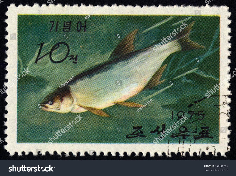 Freshwater fish korea - Save To A Lightbox