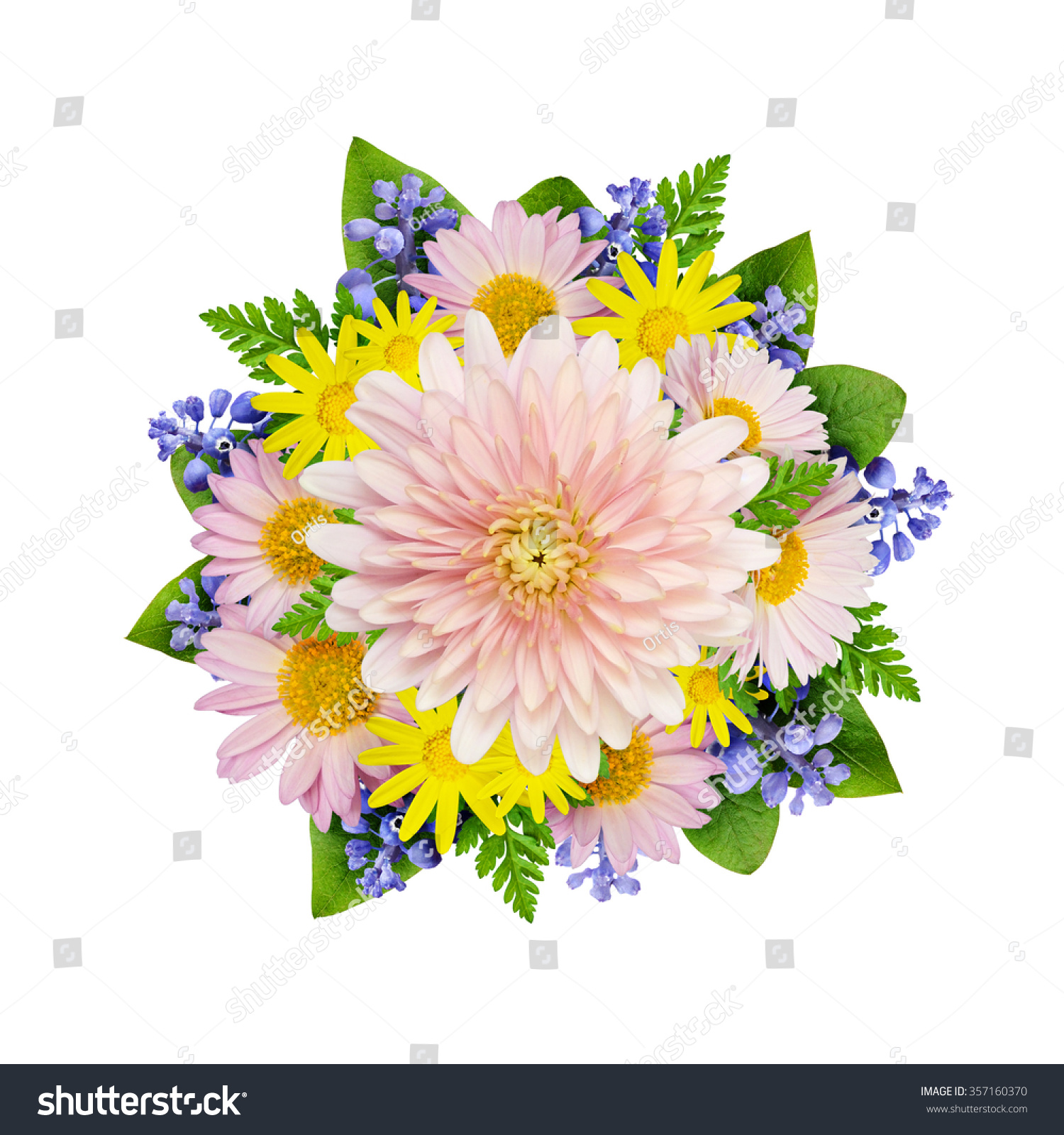 Aster and wild flowers flowers bouquet isolated on white ez canvas id 357160370 izmirmasajfo