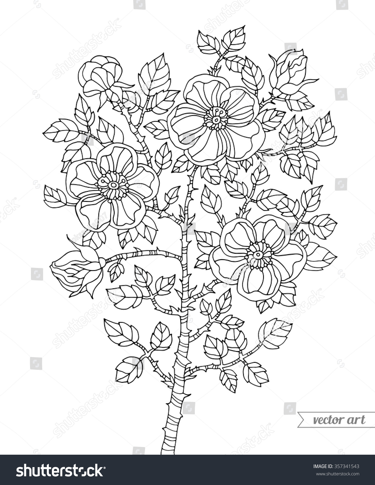 Botanical art coloring book - Botanical Vintage Vector Zentangle Coloring Book Page For Adult