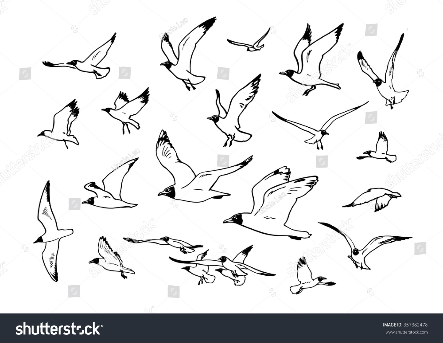 Set of sketches of flying swallows stock vector illustration - Sketch Of Flying Seagulls Set Of Silhouettes Of Seagulls Hand Drawn Vector Illustration