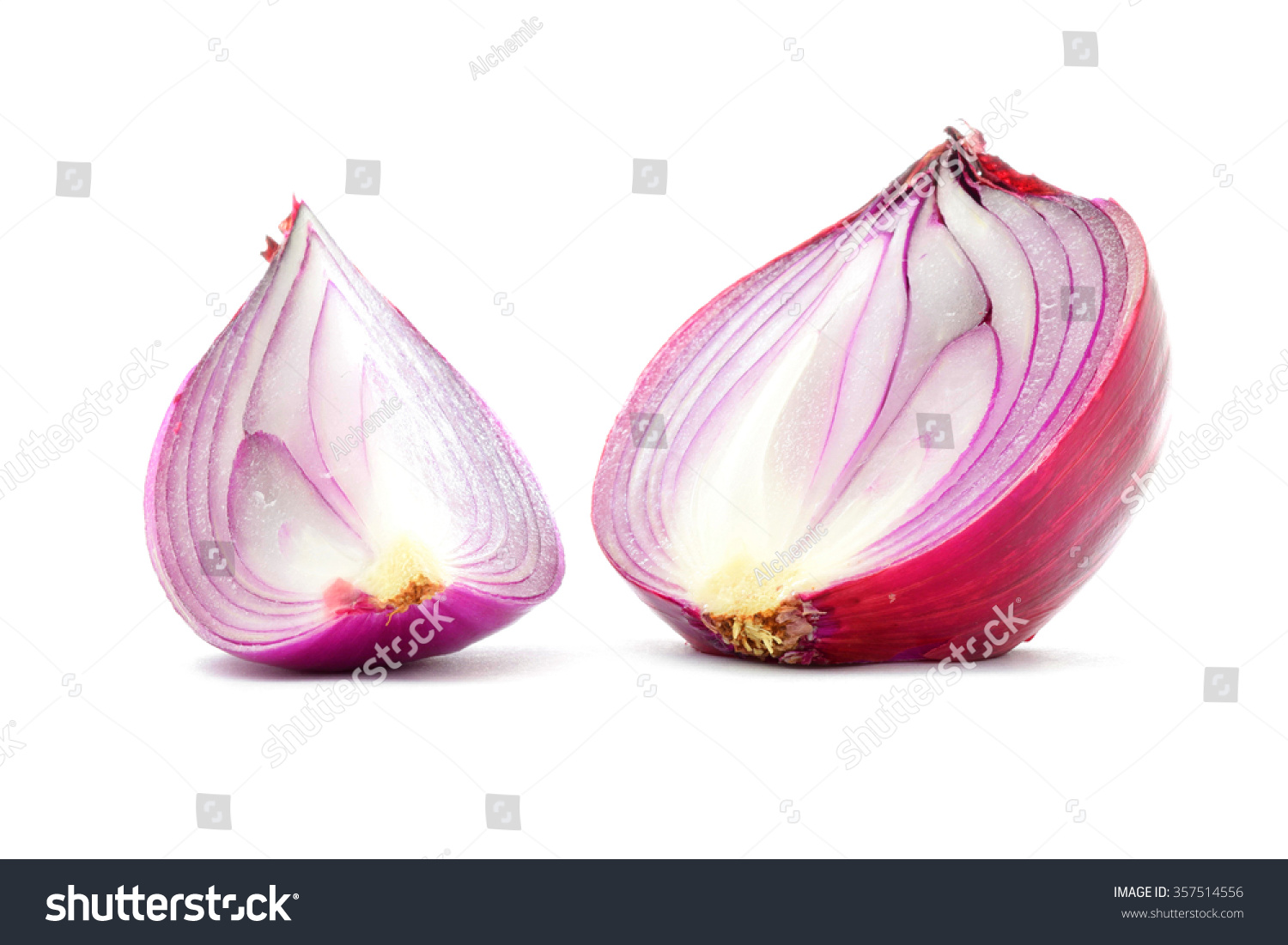 Interior designs medium size vertically growing onions growing onions - Red Onion Bulb Half And Quater Cut Vertical Longitudinal Section