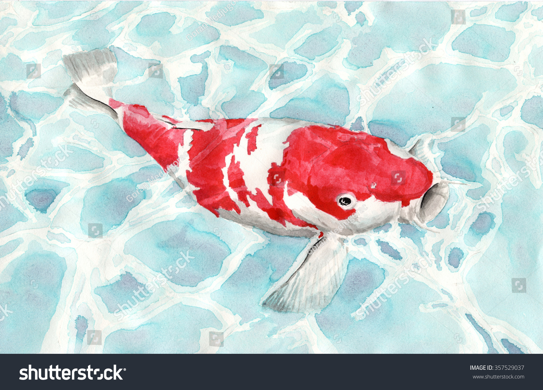 Koi Fish Color Ink Illustration Stock Illustration 357529037 ...
