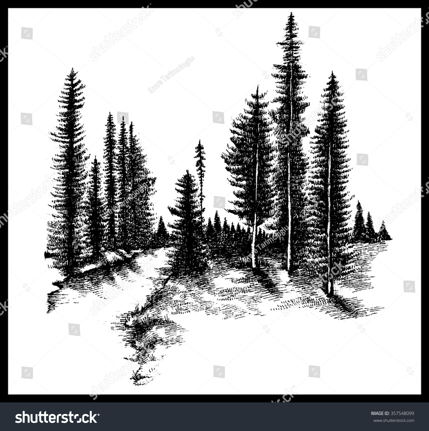 mountain forest pine trees river hand stock vector vector images of pine trees vector pine trees silhouettes free