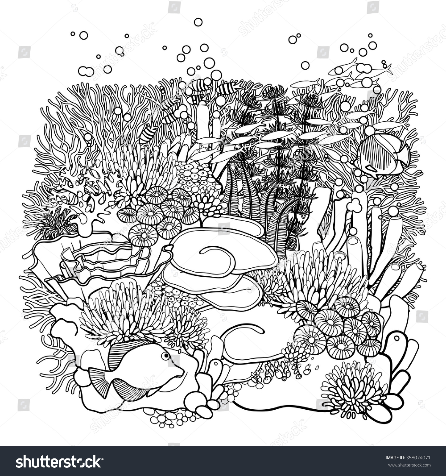 coral reef in line art style ocean plants and rocks isolated on white - Coral Reef Coloring Pages Kids