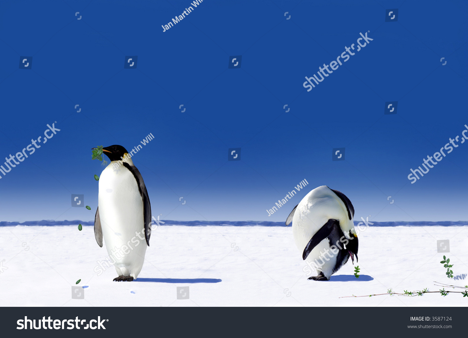 effects of global warming on penguins