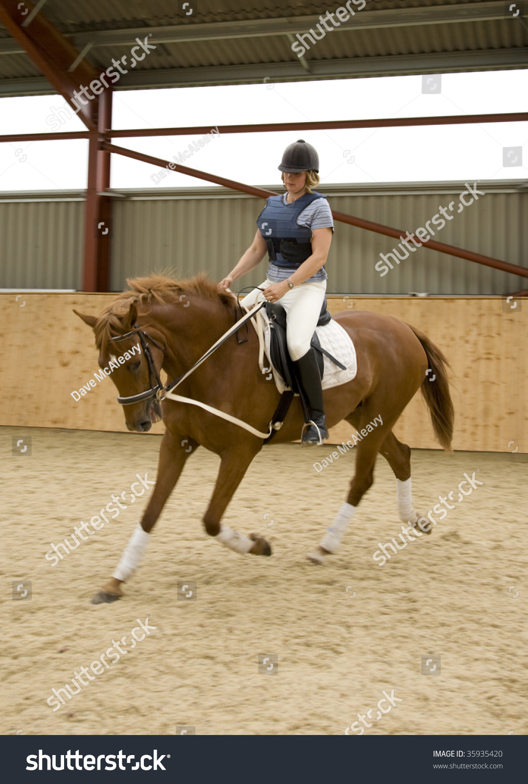 Dressage Horse Woman Rider Stock Photo Edit Now 35935420