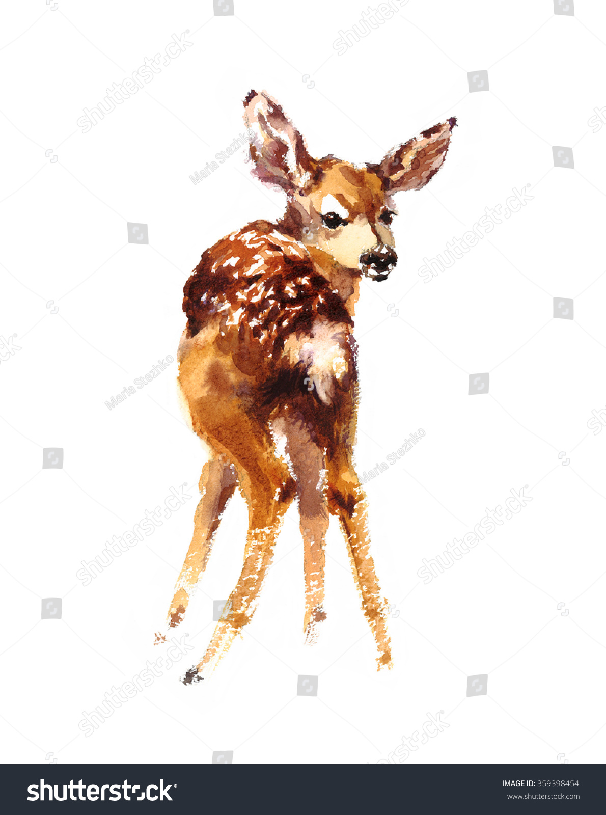 watercolor baby deer hand painted fawn stock illustration