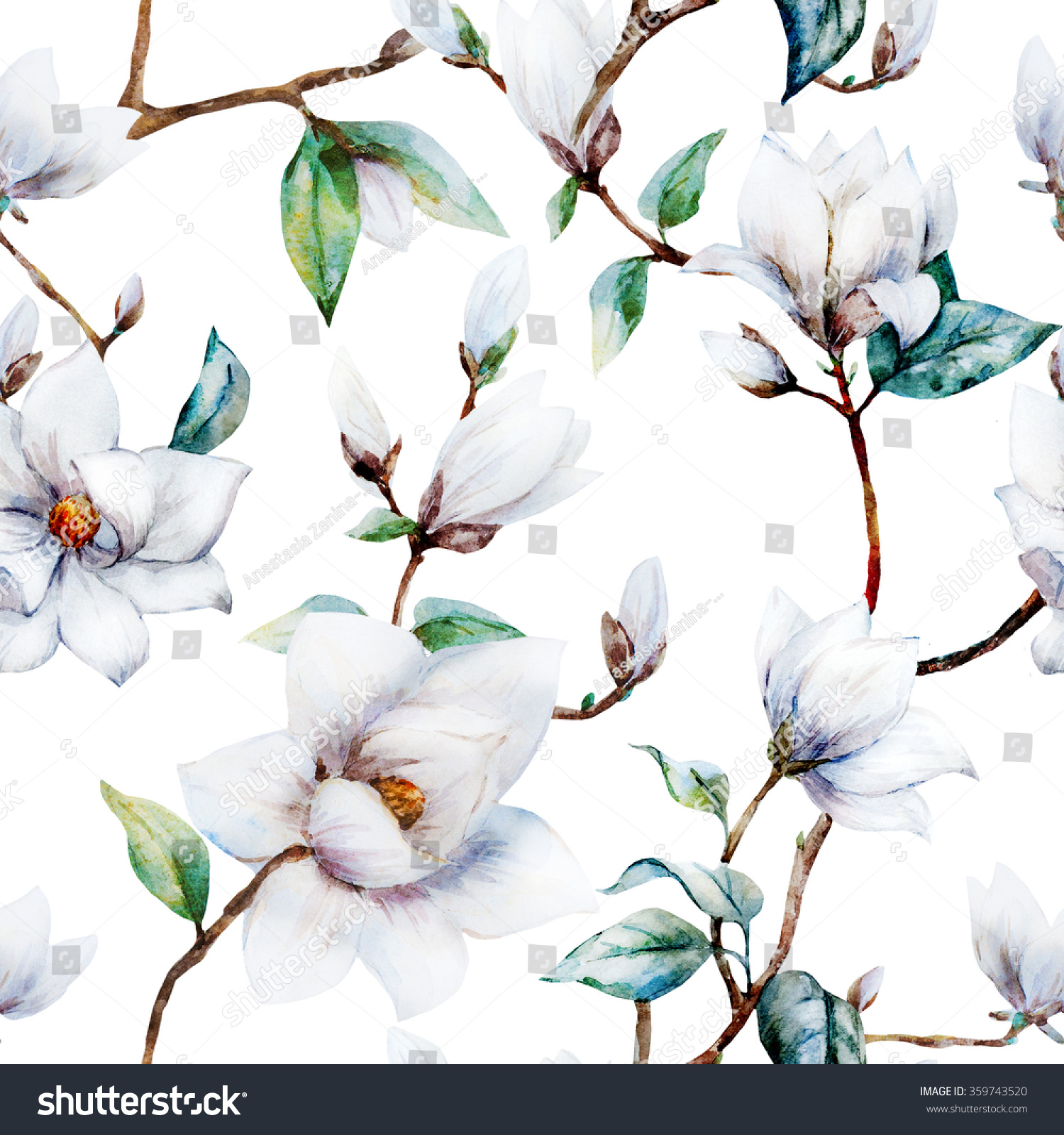Royalty Free Watercolor Pattern Magnolia Flowers 359743520 Stock