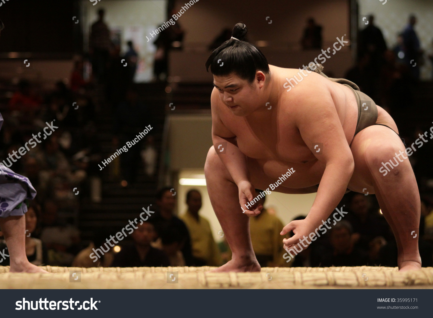 how to watch sumo match japan