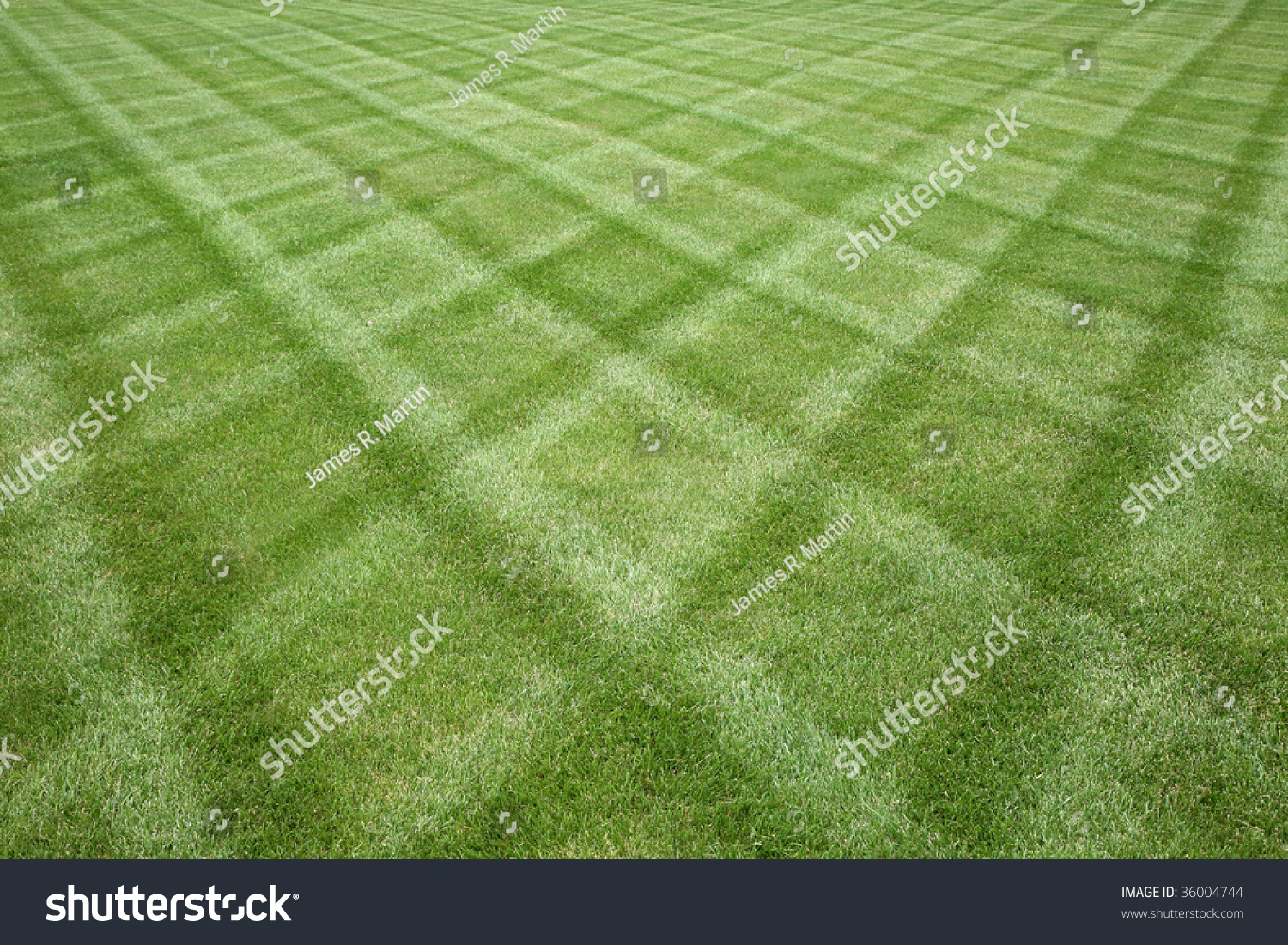 Manicured Lawn Professionally Cut In A Diamond Pattern