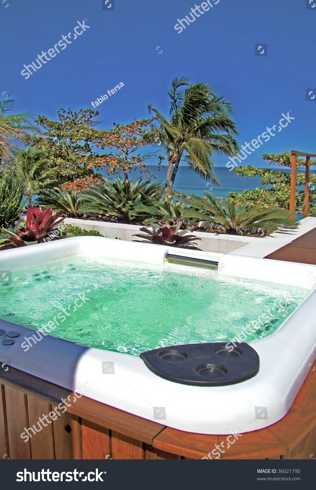 Modern Spa Jacuzzi Outdoors Under Beautiful Stock Photo (Royalty ...