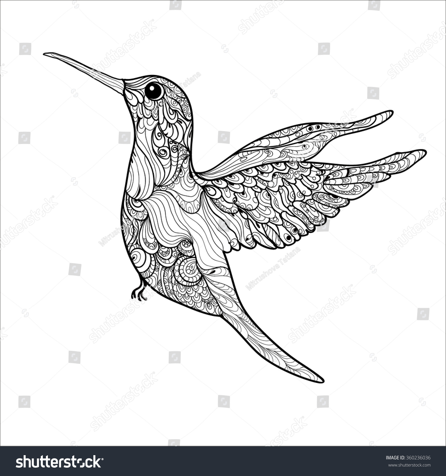 Royalty-free Coloring book pages. Hummingbird small… #360236036 ...