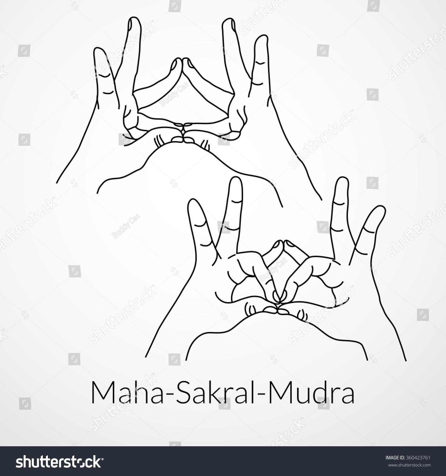 Hand Yoga Mudra Maha Sakral Mudra Vector Illustration Stock Vector ...