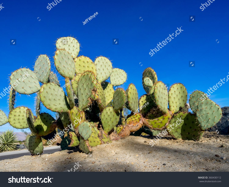 Desert vapes coupon code 2018