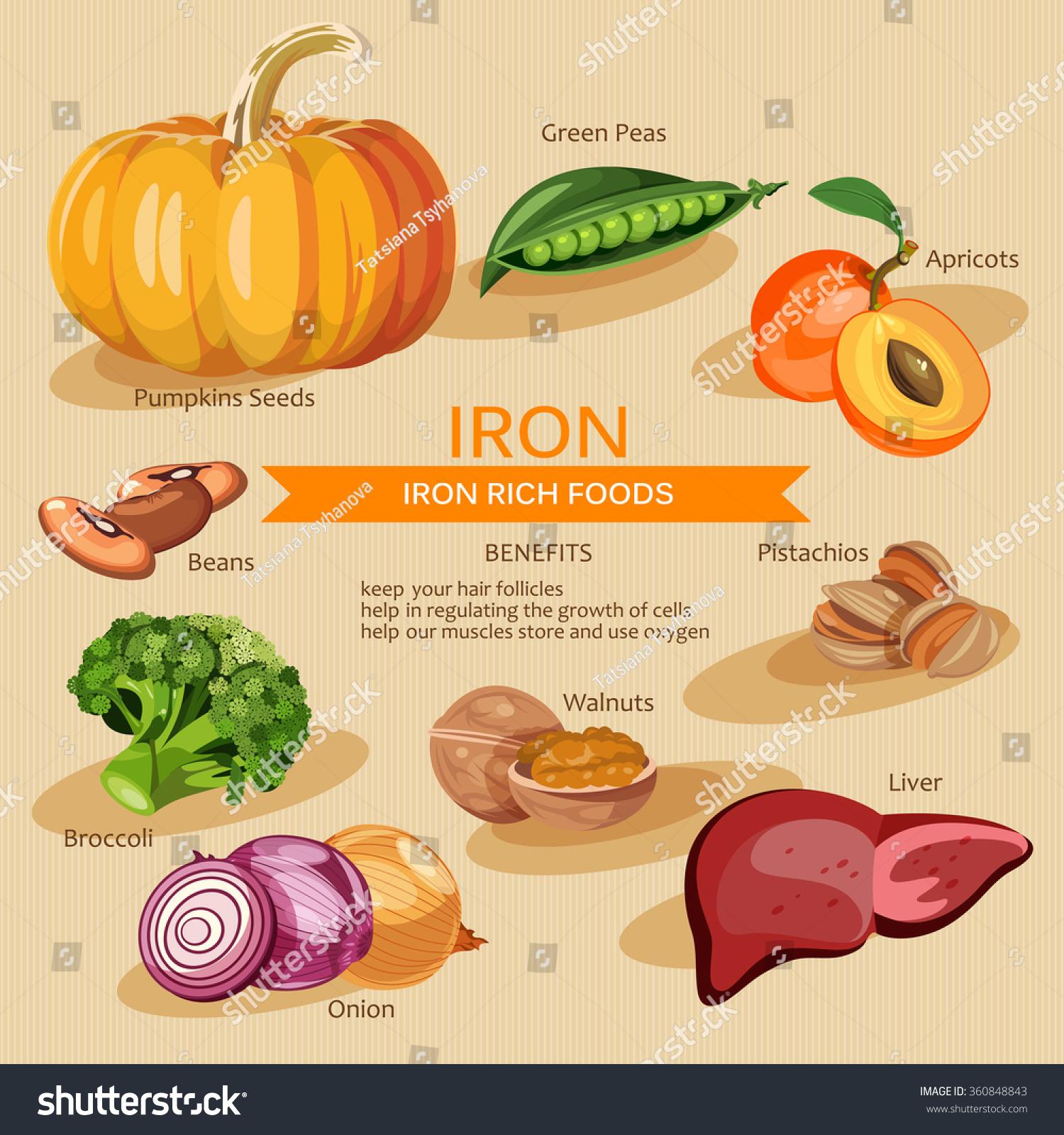 Vitamins Minerals Foods Illustration Vector Set Stock ...