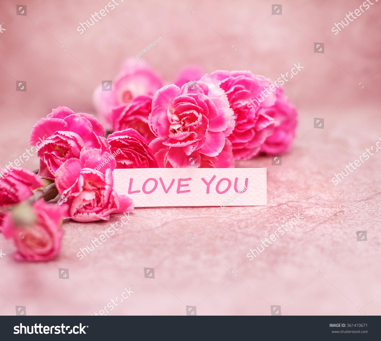 Beautiful blooming carnation flowers love you stock photo edit now the beautiful blooming carnation flowers with love you wording on white card paper izmirmasajfo