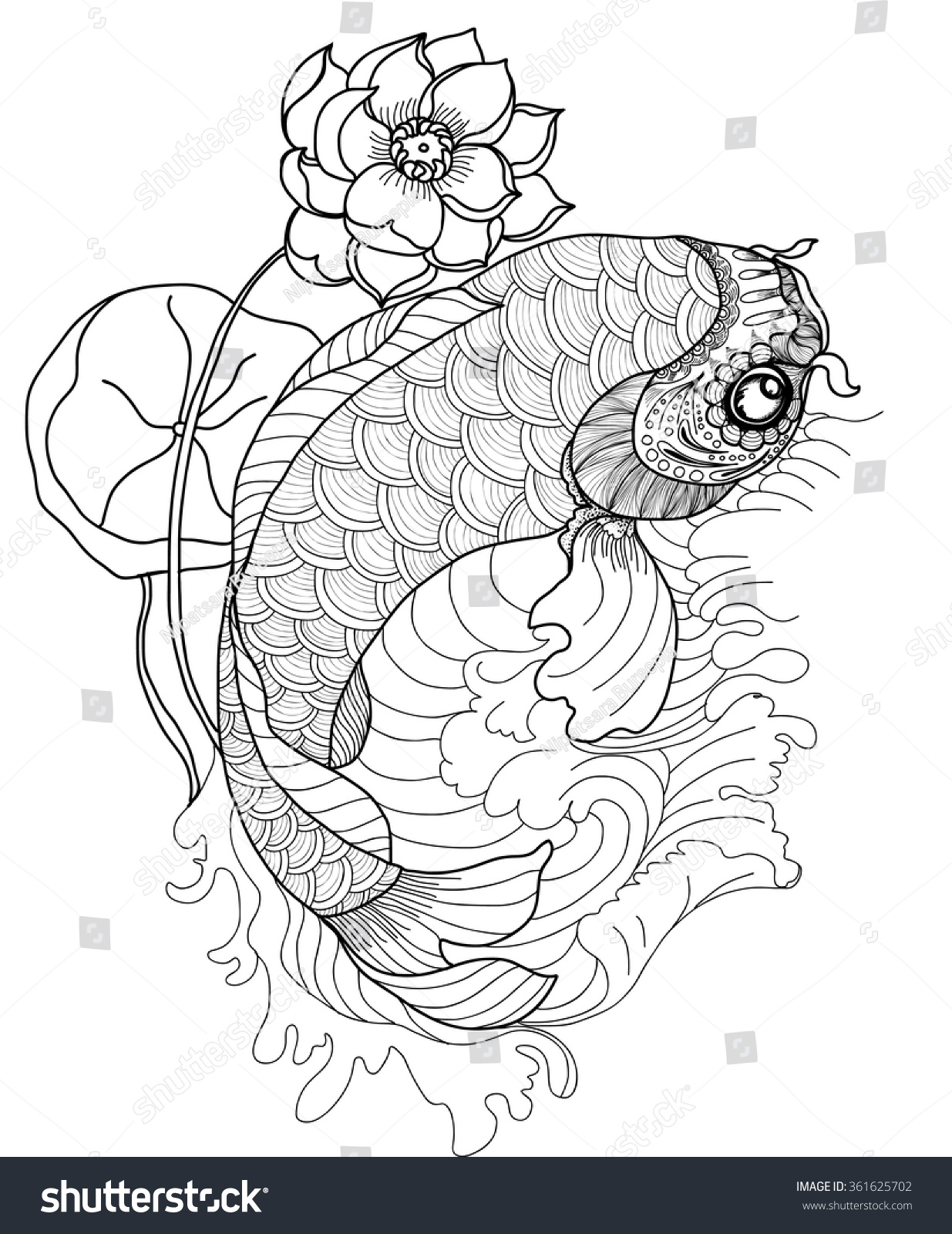 Hand Drawn Koi Fish In Circlegold Japanese Carp Line Drawing Coloring Book Vector Image