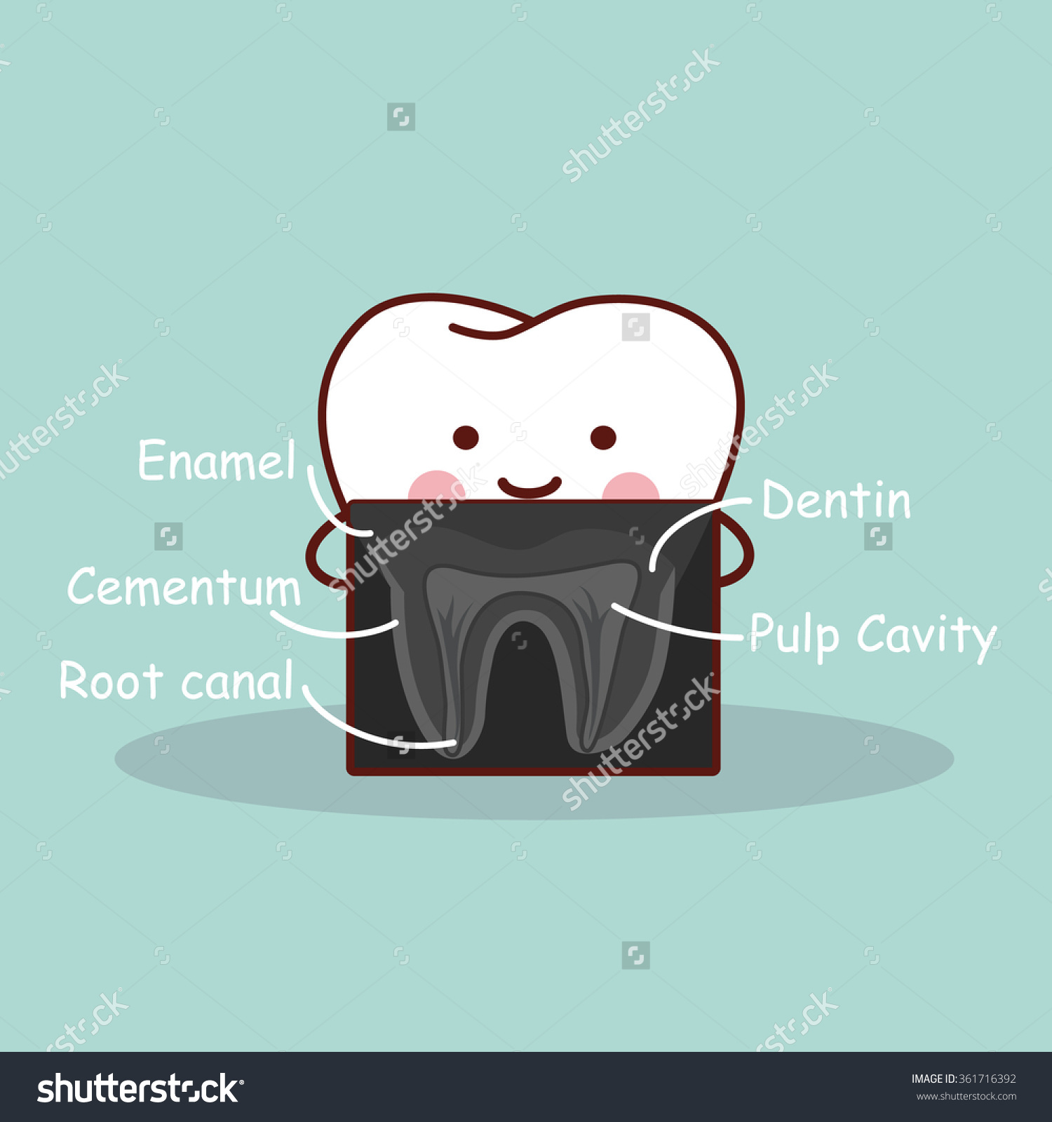 cartoon tooth with X ray great for health dental care concept