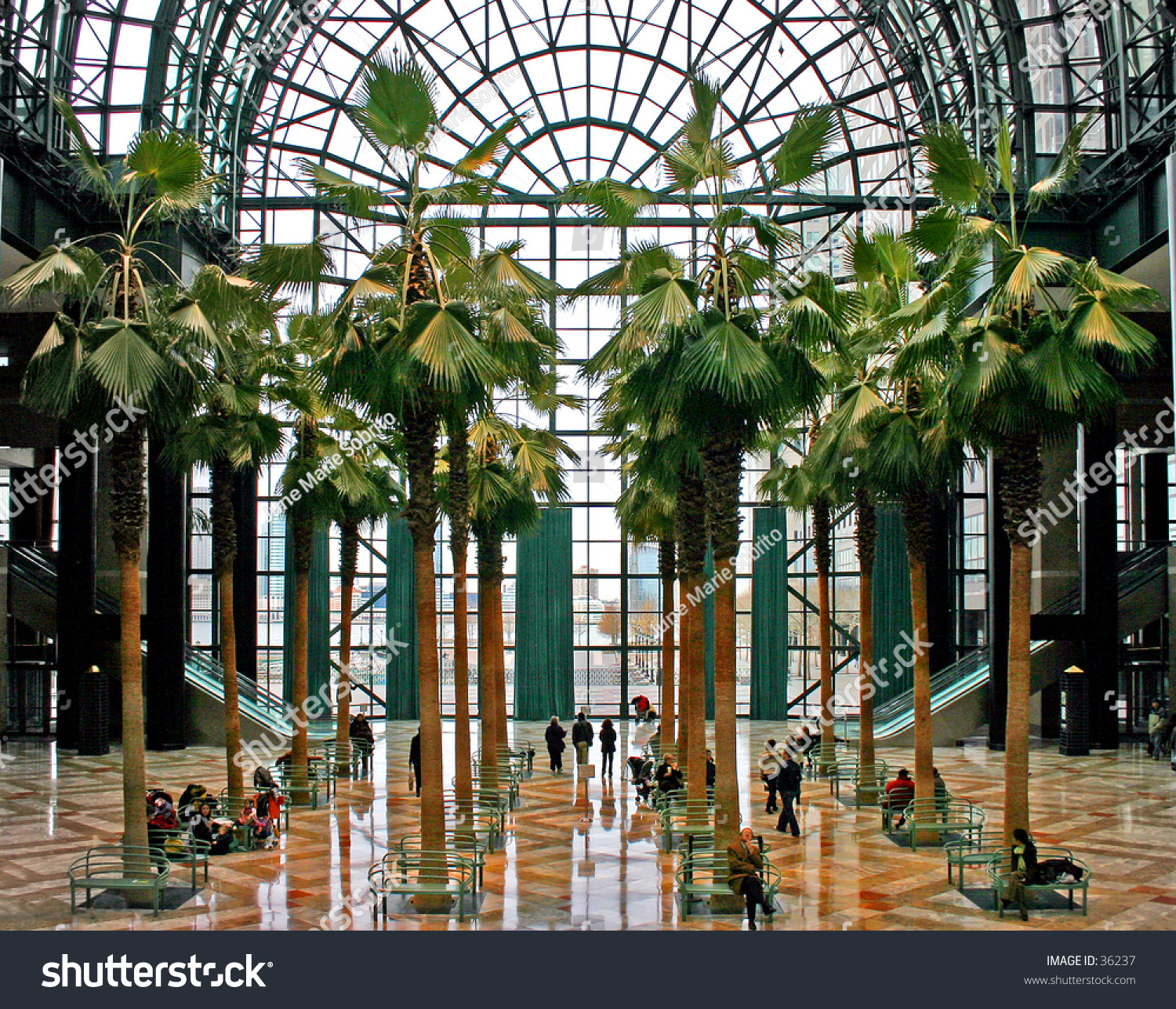 Interior Of Winter Garden Building In New York City Stock Photo 36237 Shutterstock
