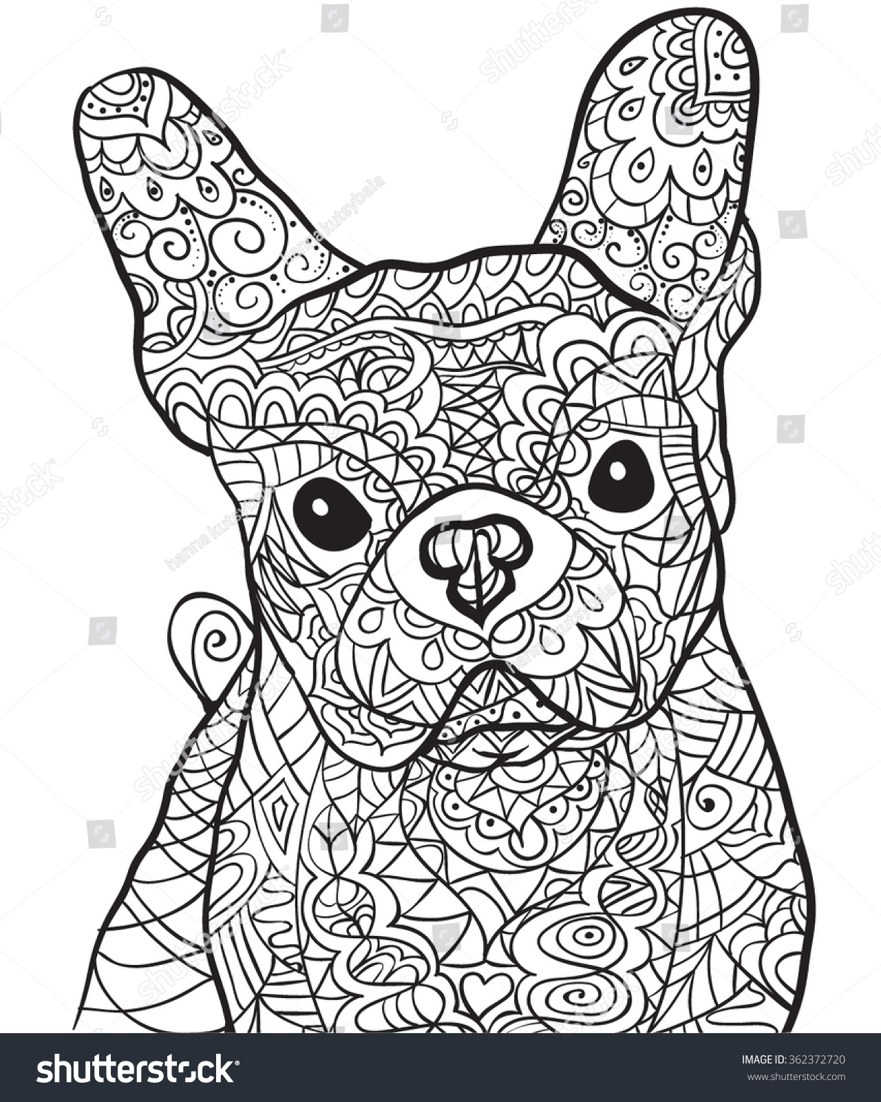 hand drawn dog bulldog isolated on stock vector 362372720