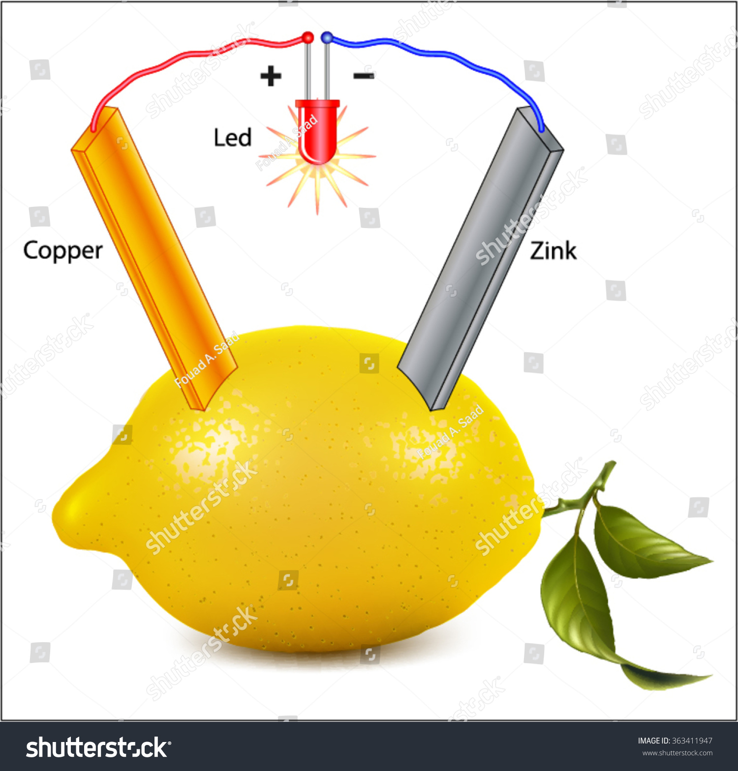 Lemon Battery Diagram Wiring Diagrams Source Potato How To Make A Electricity Stock Vector Royalty Free 363411947 Science Fair