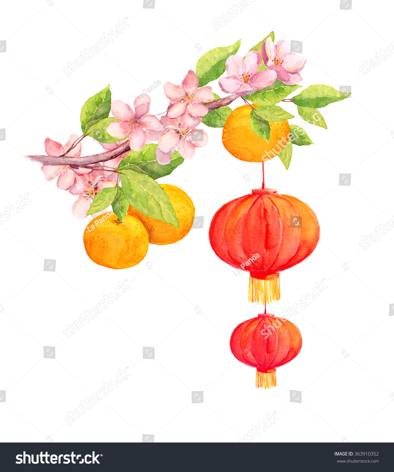 Plum Peach Flower Red Paper Lantern Stock Illustration 363910352