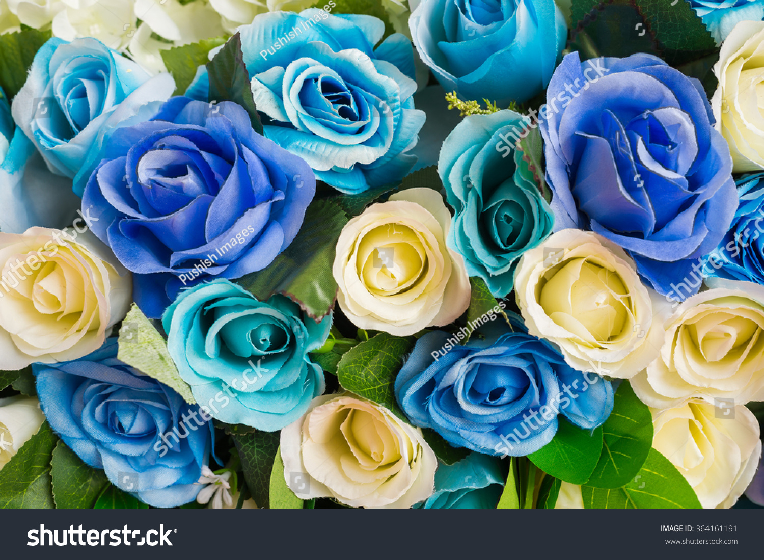 Blue Yellow Roses Flower Bouquet Background Stock Photo Edit Now