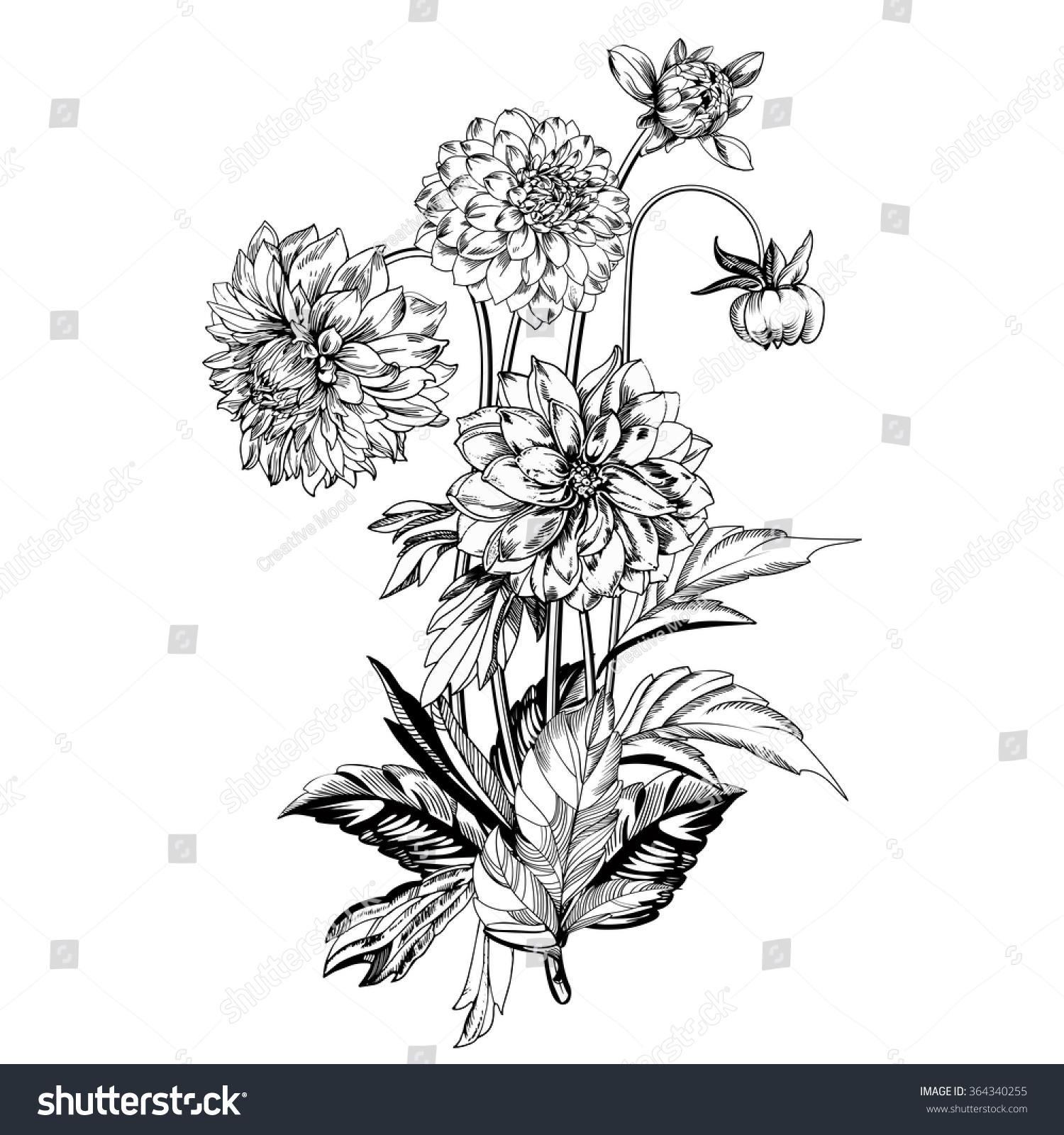 Vintage Elegant Flowers Black White Vector Stock Vector Royalty