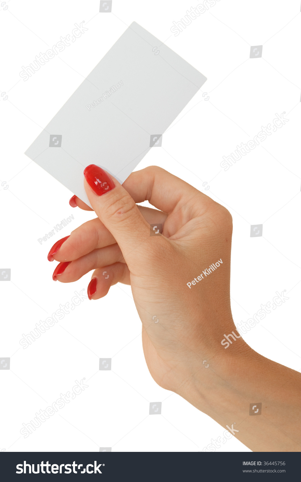 Technology Management Image: Nice Female Hand Holding A Blank Business Card Stock Photo