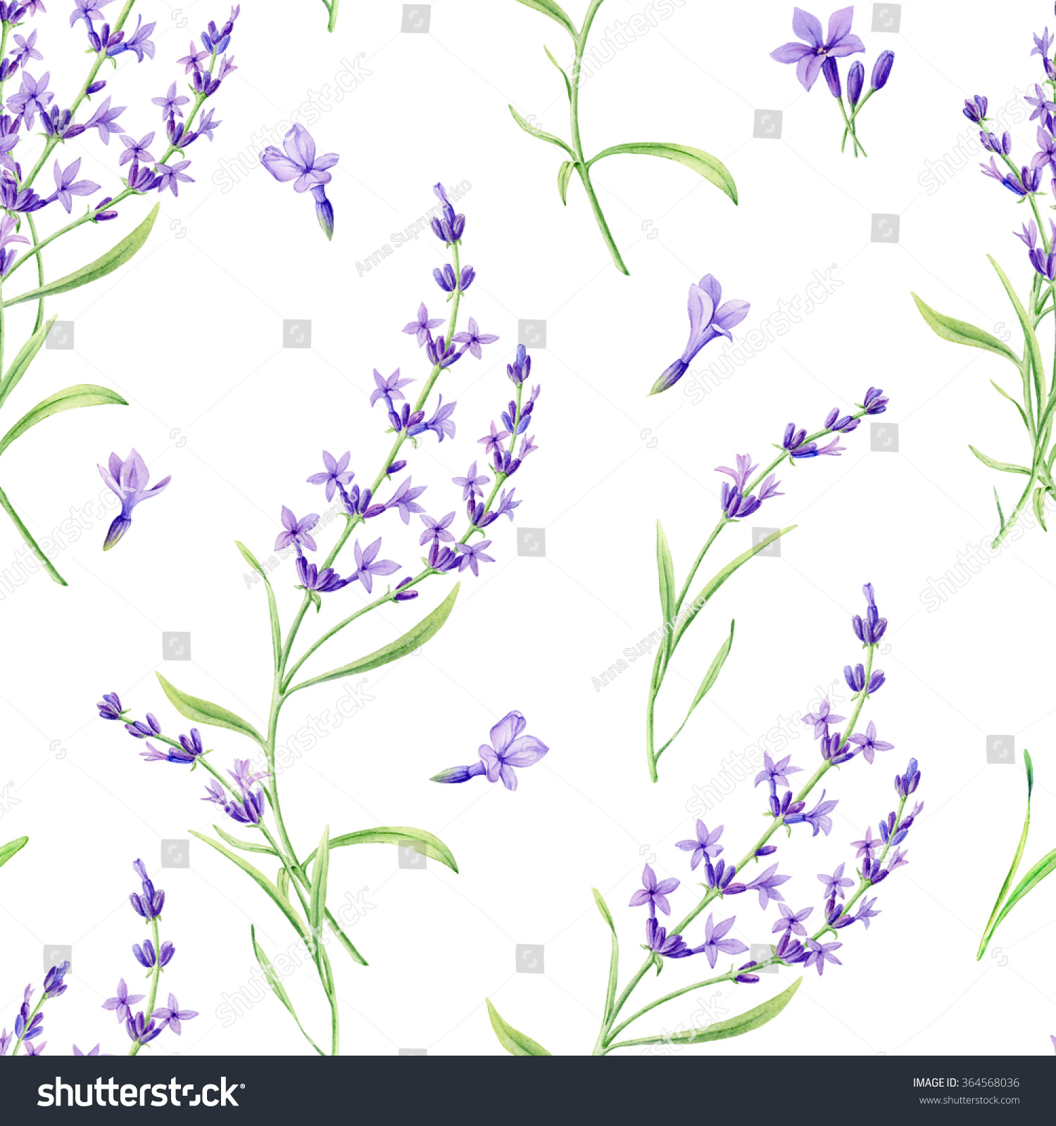 seamless pattern lavender flowers on white stock
