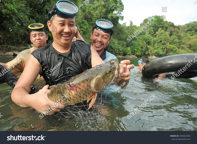 Freshwater fish malaysia - Kiulu Sabah Malaysia Mar 13 2014 Unidentified Man Showing Freshwater Fish Called