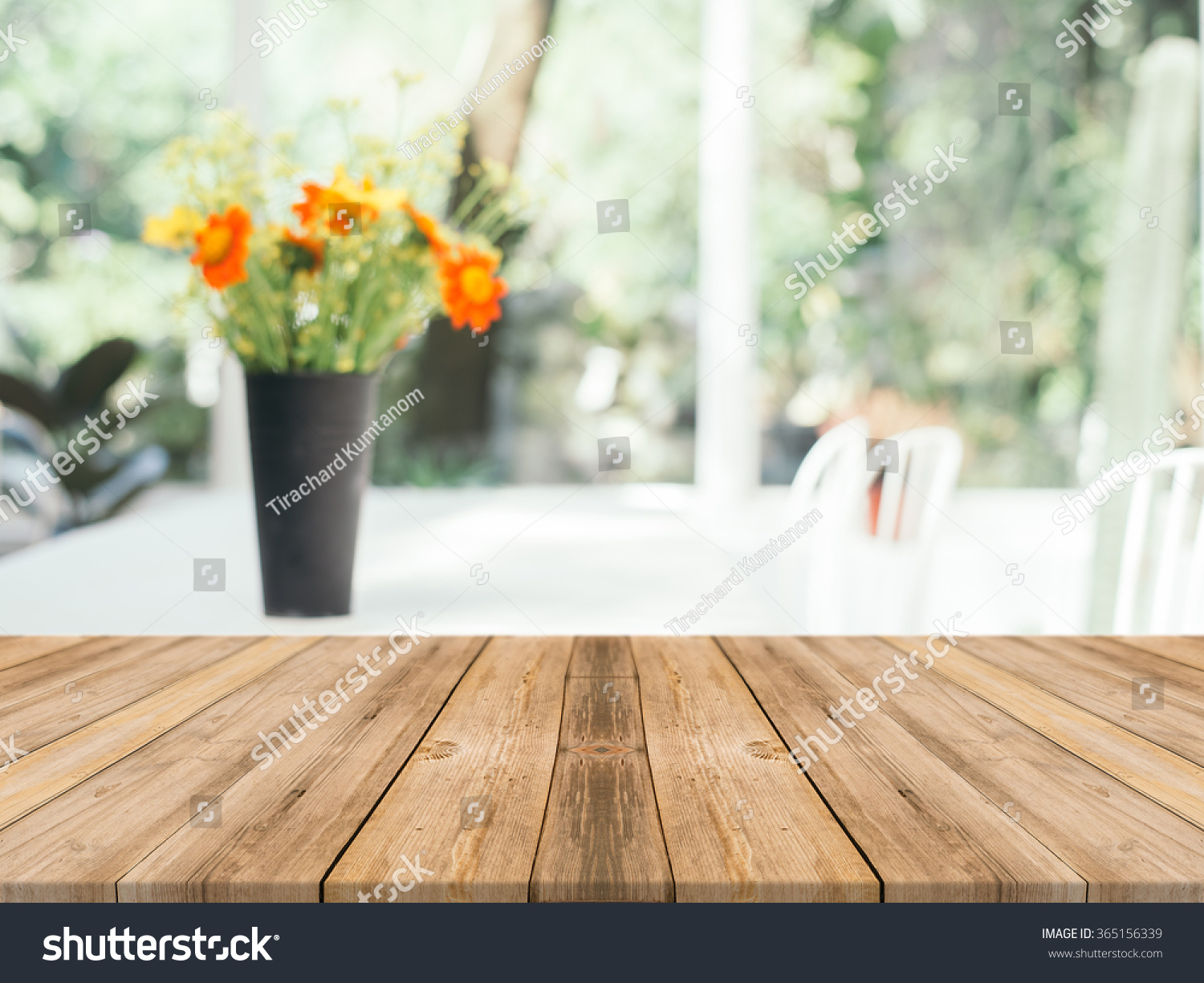 Table Background Color  Using CSS Classes  HTML