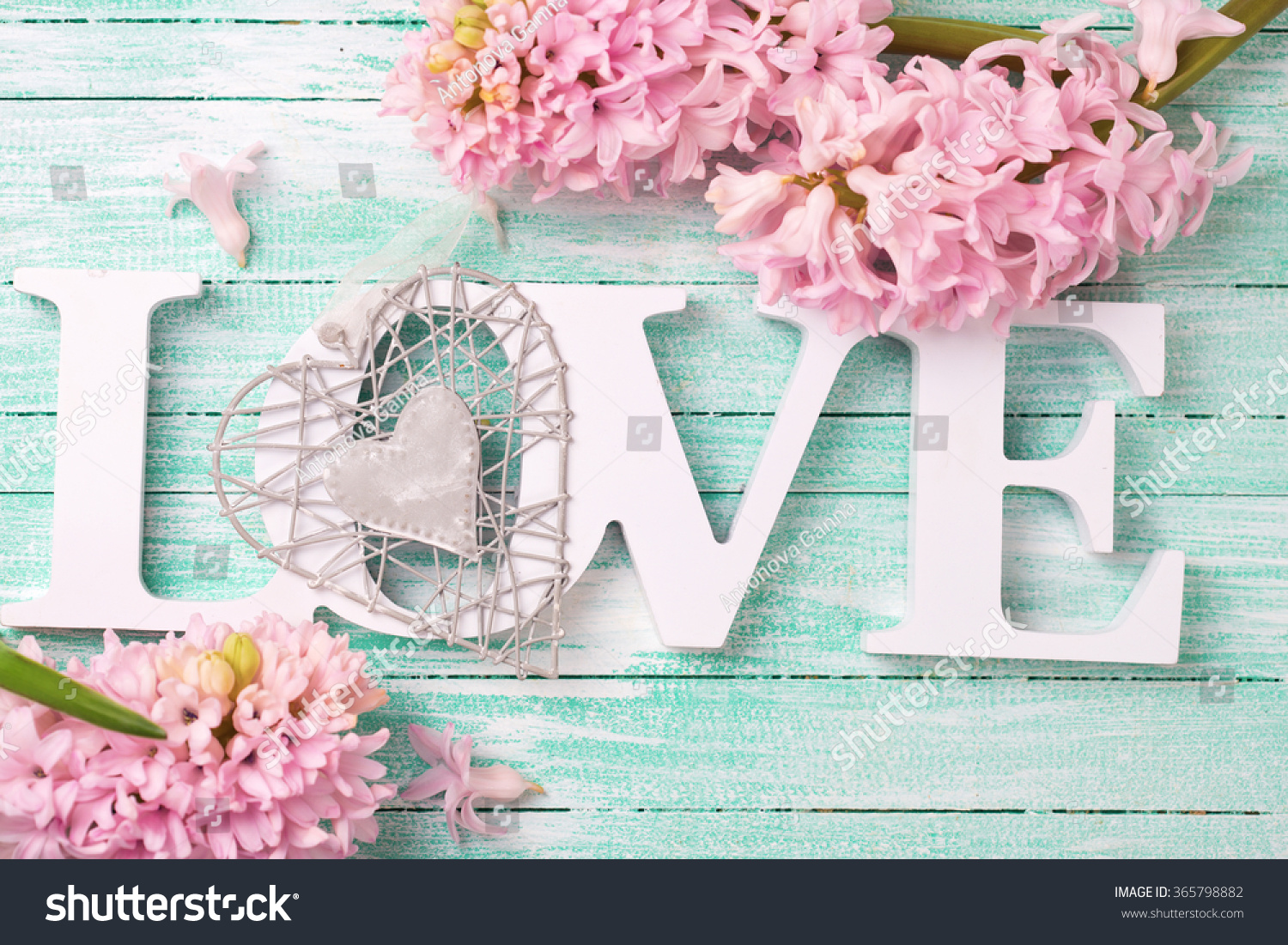 Word Love Pink Flowers Hyacinths Decorative Stock Photo Edit Now
