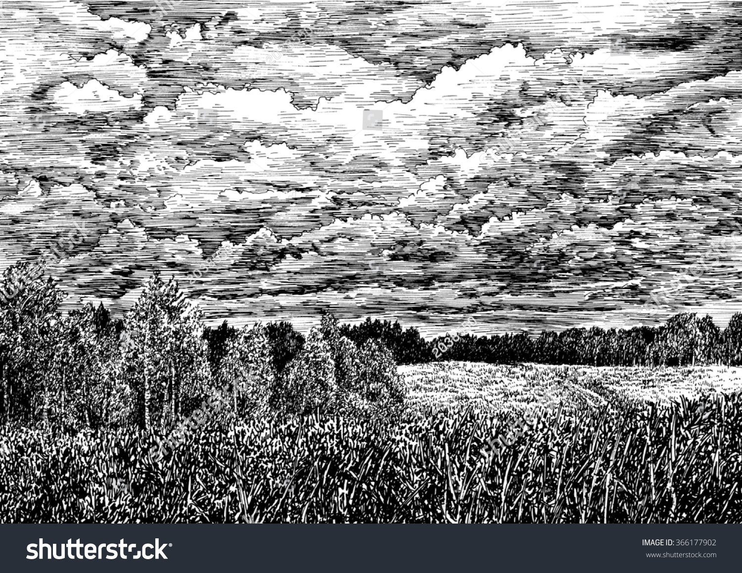 Forest And Field Nature View Of Russian With Clouded Sky Black White Dashed