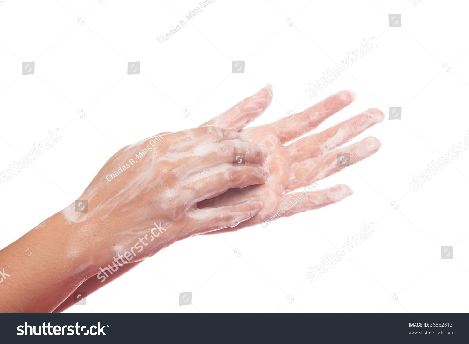 Scratching Palm Finger Nails Soap Part Stock Photo (Safe to Use ...