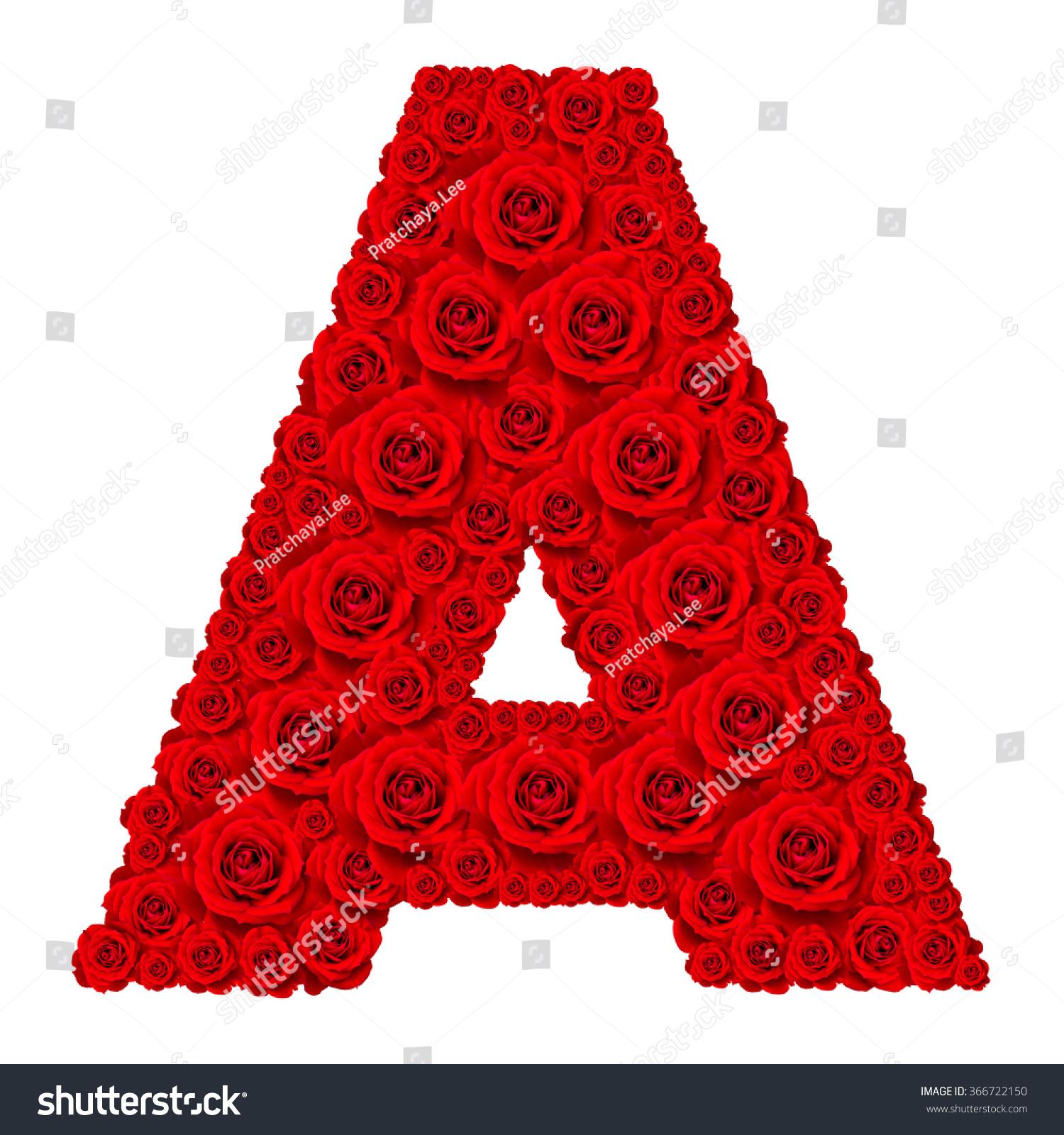 Rose Alphabet Set Alphabet Capital Letter Stock Photo ...