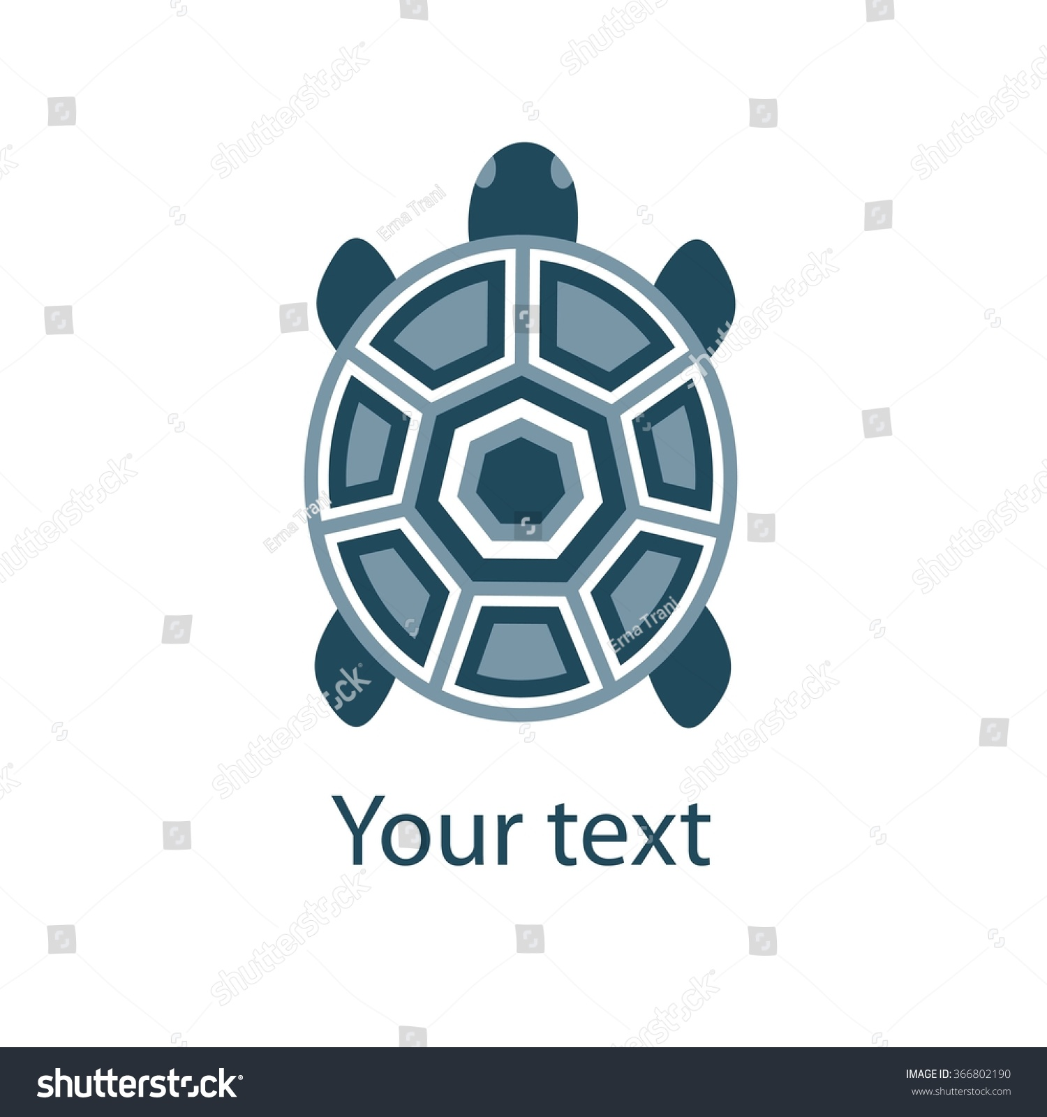 Stylized Turtle On White Background Turtle Stock Vector Royalty