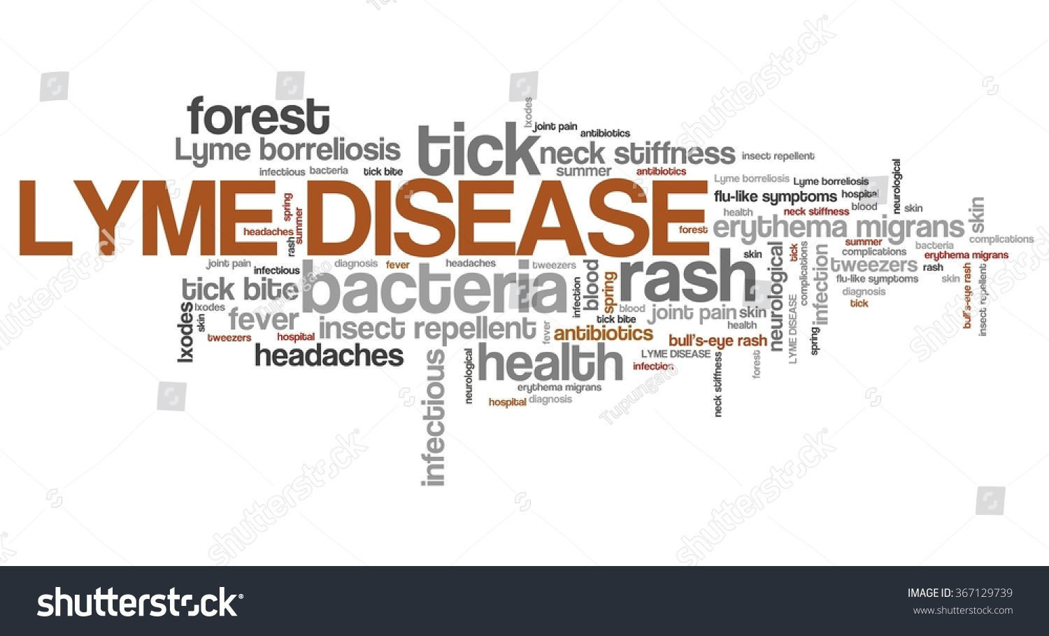 Lyme Disease Tick Borne Infectious Sickness Stock Illustration 367129739 - Shutterstock