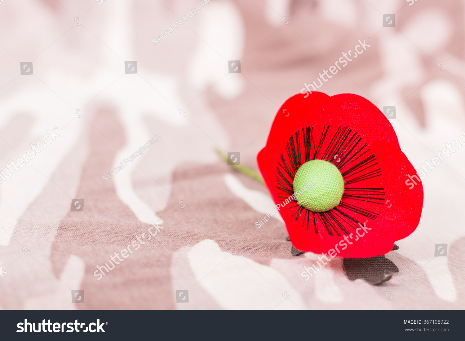 Red Poppy Symbol Thailand Veterans Day Stock Photo Safe To Use