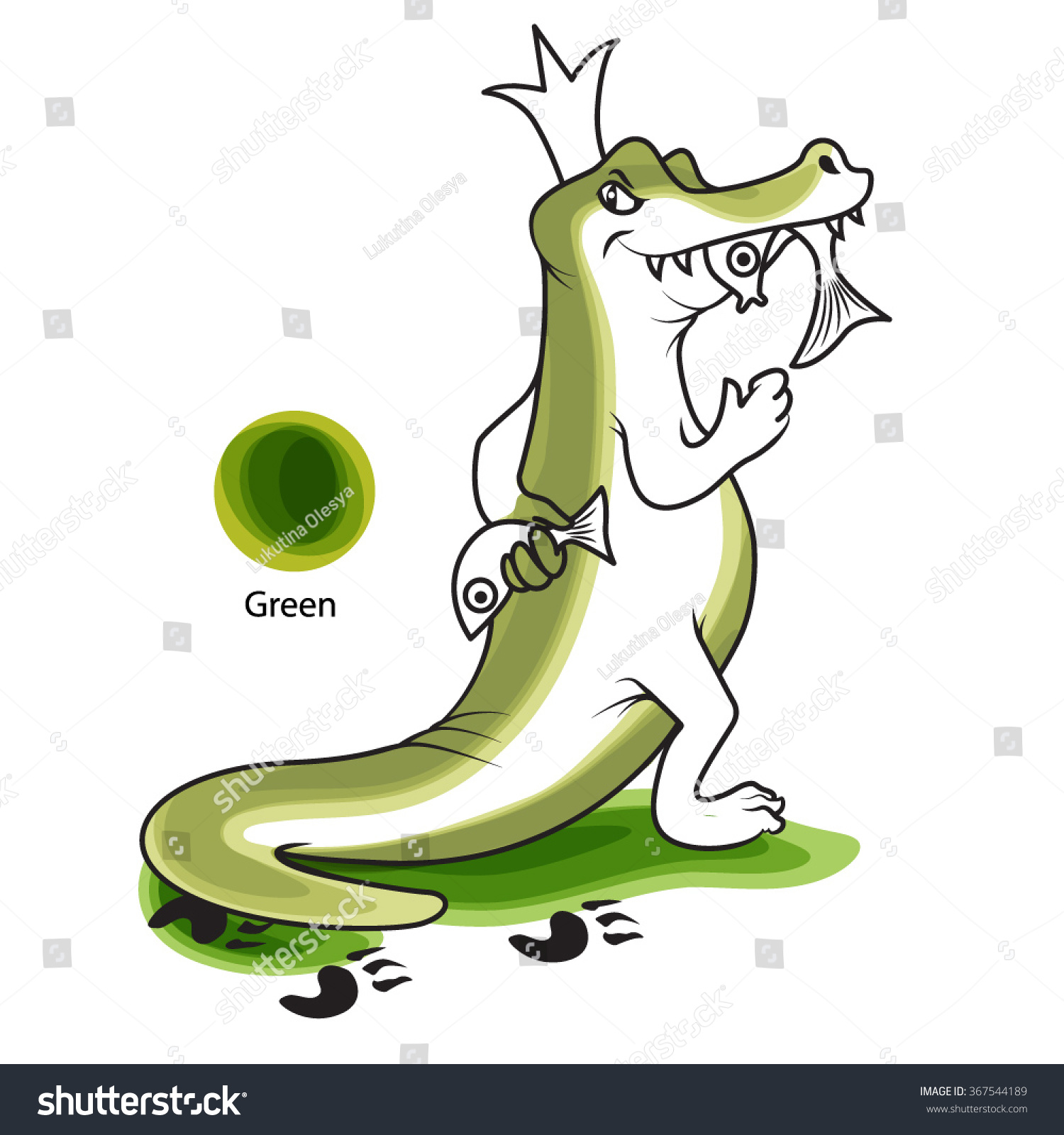 Crocodile Eats Fish Learning Illustration Demonstration Stock Vector ...