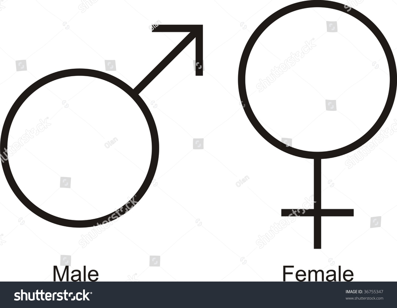 Male Female Symbols Words Stock Illustration 36755347 Shutterstock