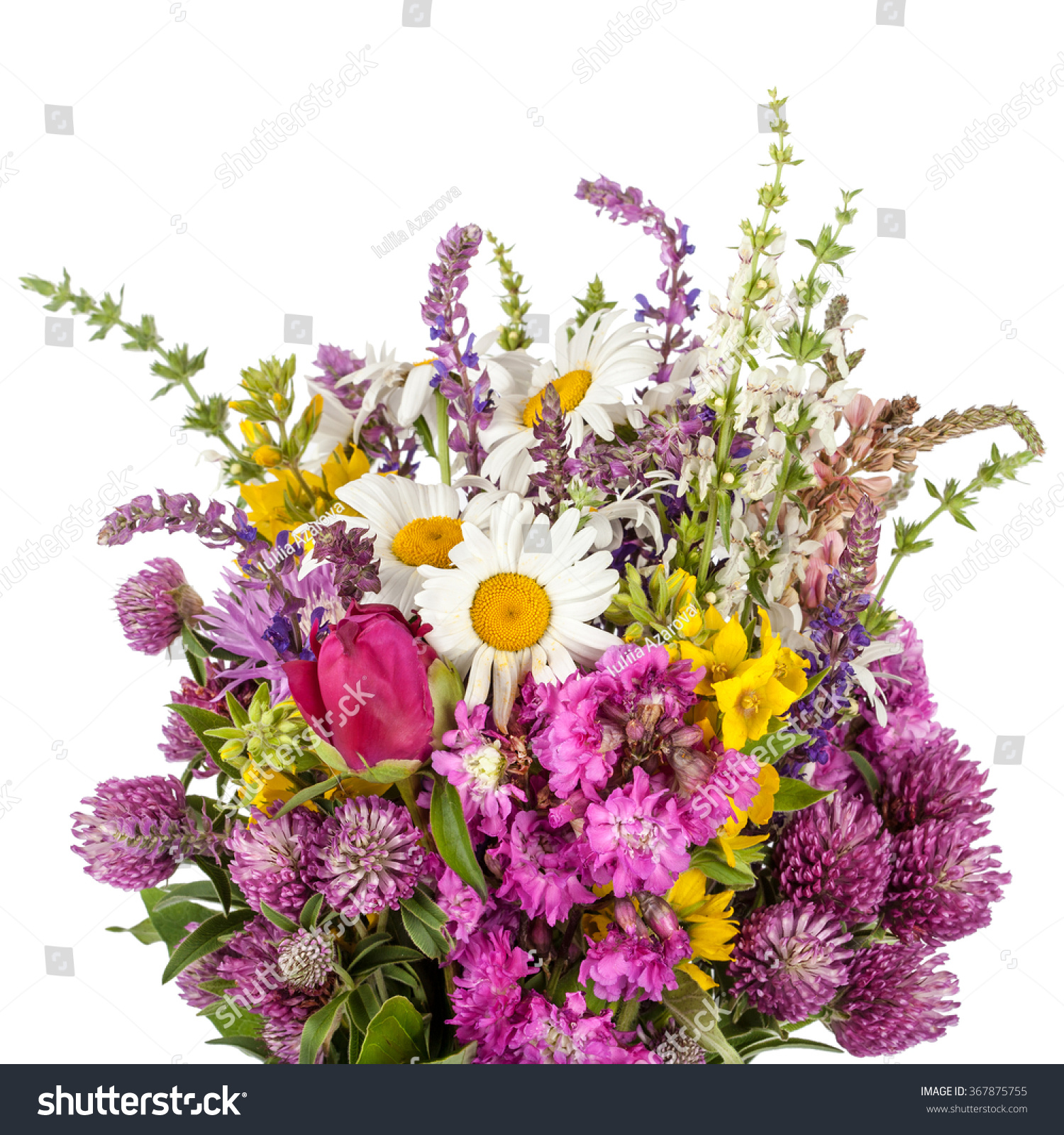 Beautiful wild flowers bouquet wildflowers stock photo edit now beautiful wild flowers bouquet wildflowers izmirmasajfo