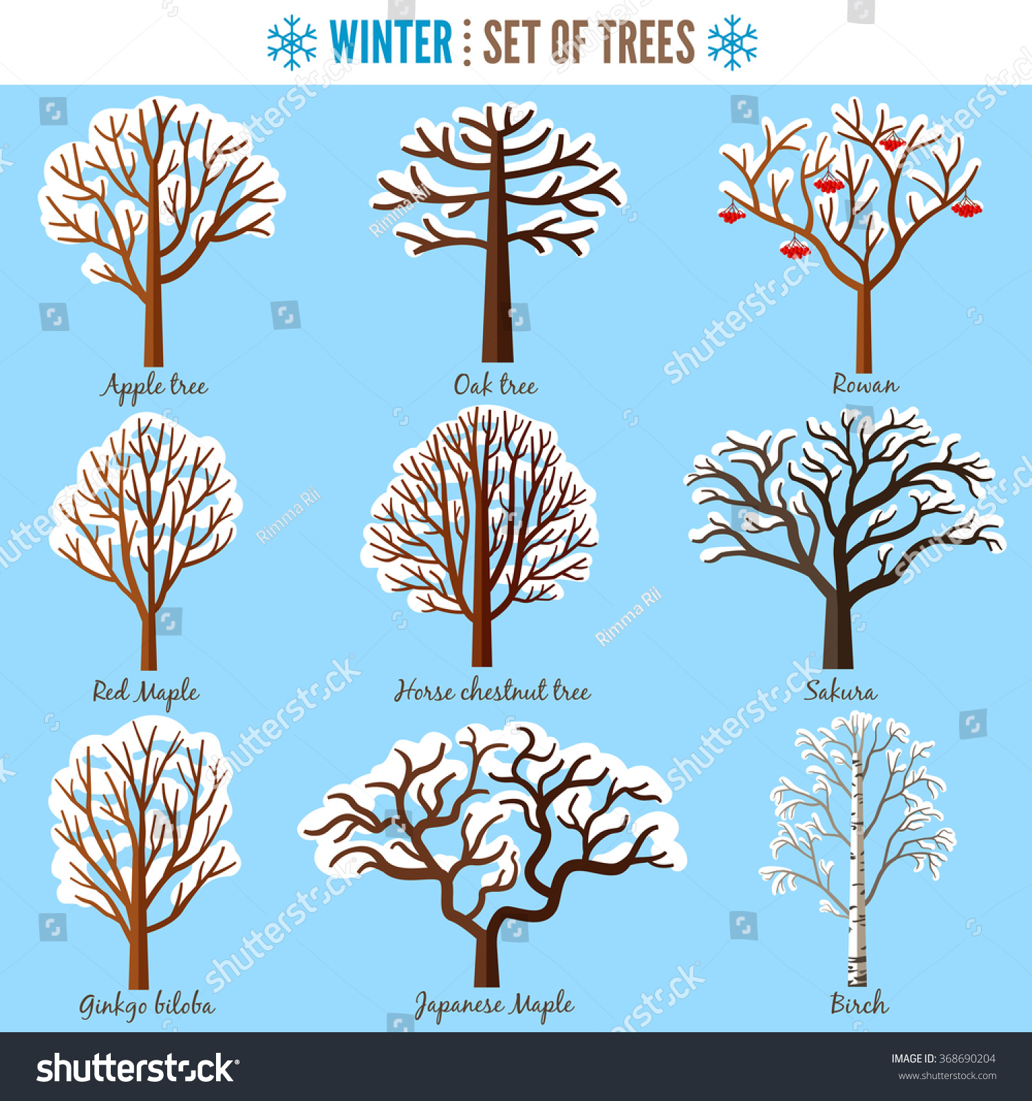 Set Winter Trees On White Background Stock Vector