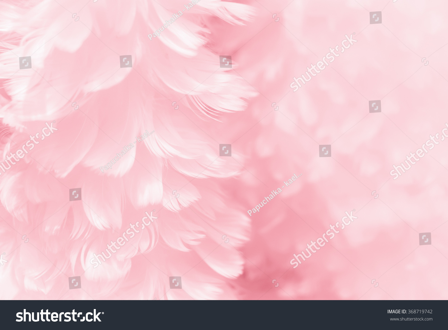 Fluffy mauve pink feather fashion design background - black and white tinted Valentine day fuzzy textured photograph - soft focus