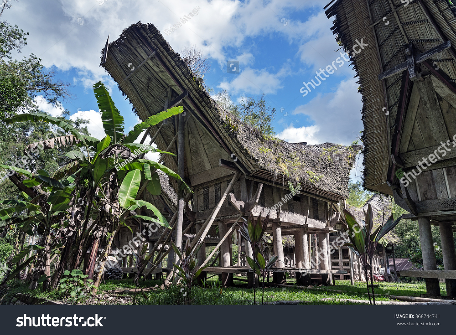 indonesian value and ideology of toraja Indonesia money, indonesia rupiah money we offer competitive price with value of pinisi cruise - tourist information - makassar - toraja.